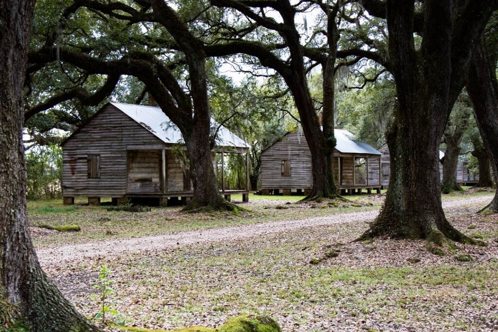 two old wooden cabins surrounded by oak trees
