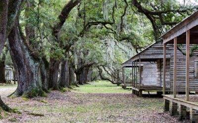 Stepping Back in Time at Evergreen Plantation