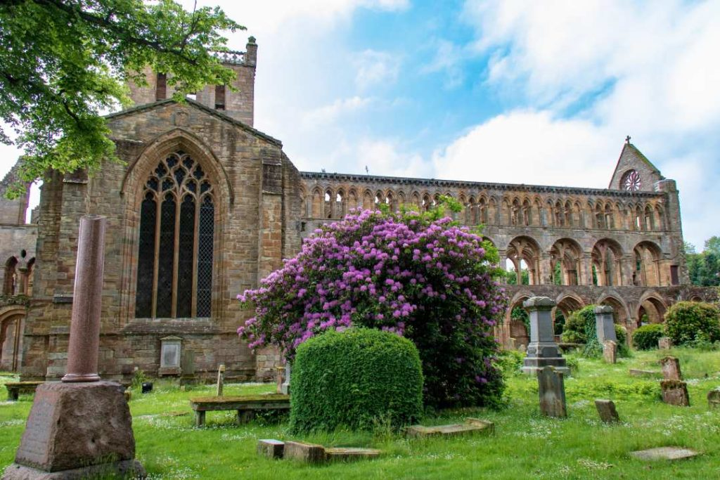 Jedburgh Abbey has on your list of abbeys in Scotland to visit