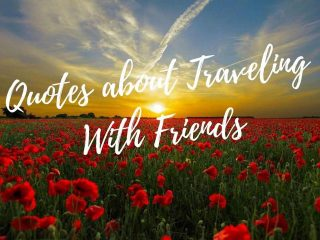Quotes-traveling with friends