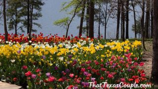 things to do in hot spring arkansas