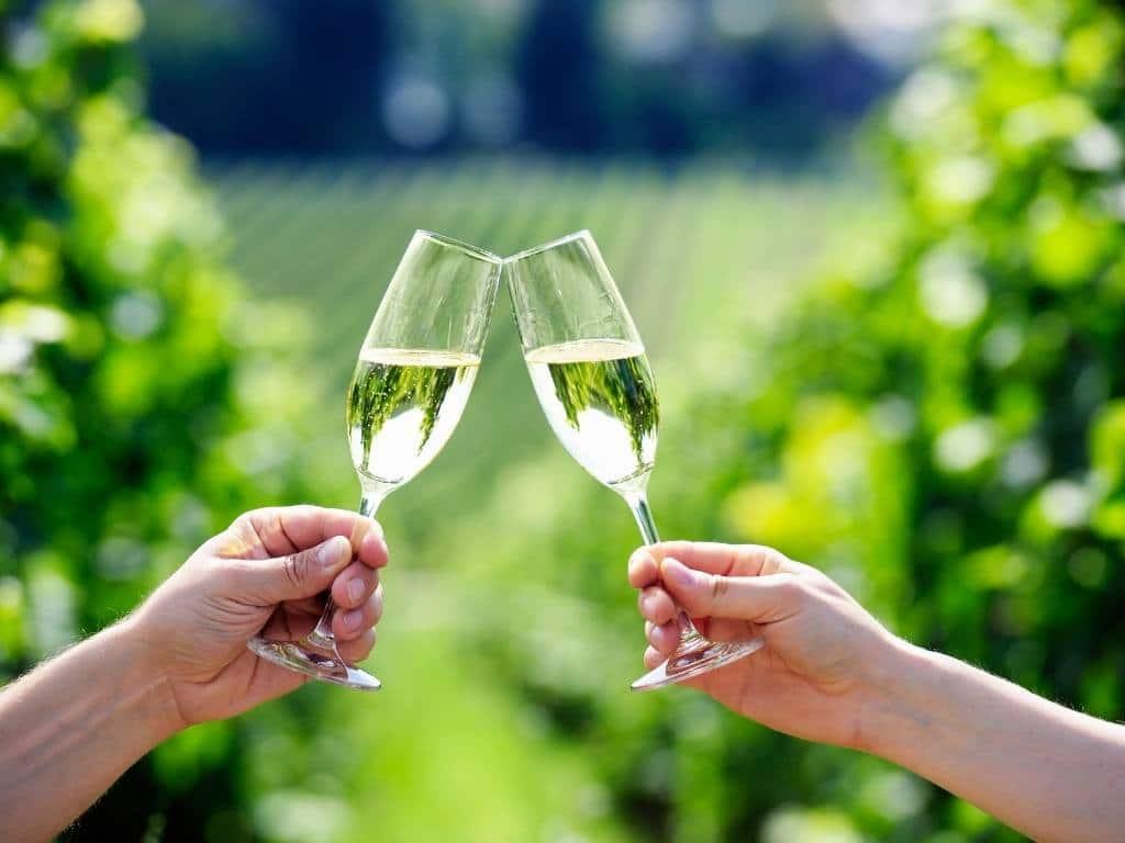 Italian Wine-Prosecco